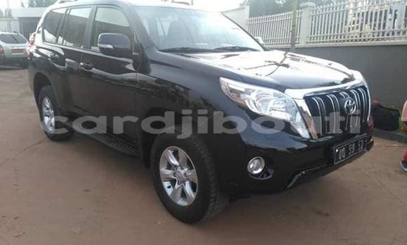 Premier site de petites annonces automobiles - Djibouti