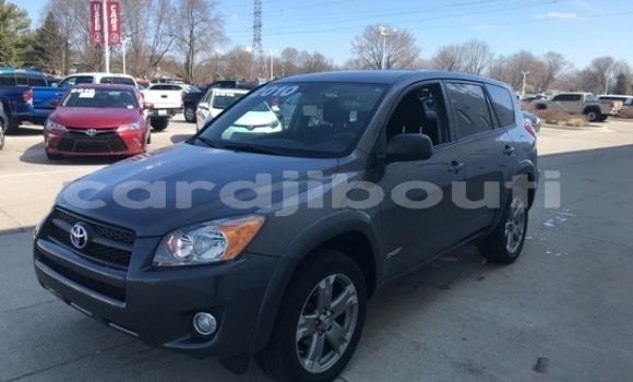 Acheter Importé Voiture Toyota RAV4 Autre à Dorra, Tadjourah